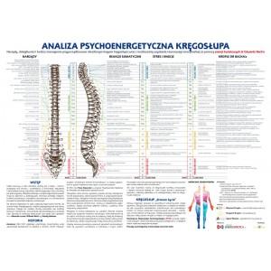 Analiza psychoenergetyczna kręgosłupa 70*100